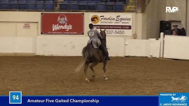 BB16 - Five Gaited Amateur Championship