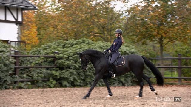Equestrian World Shorts- Sönke & Semmieke Rothenberger