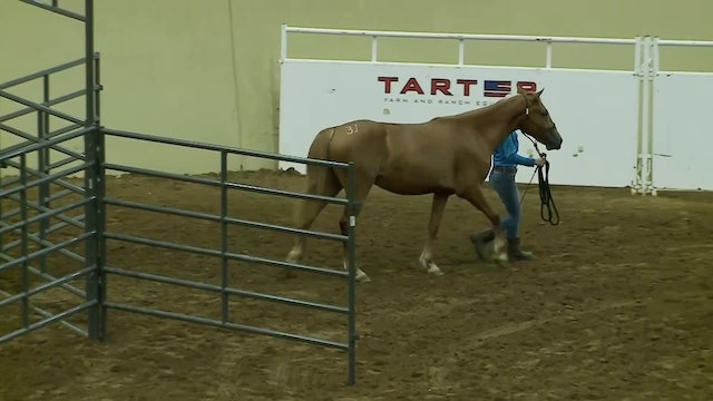 Youth Trail Class - Rebecca Henkel