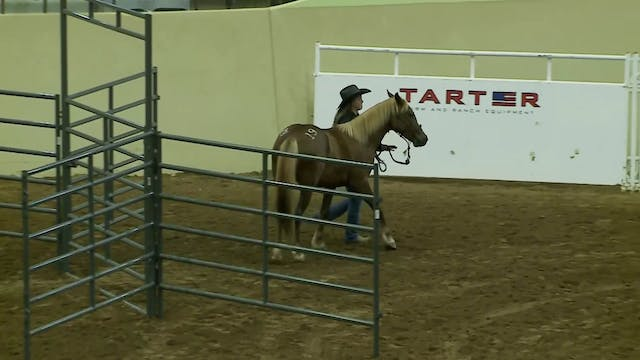Youth Trail Class - Grace Thompson