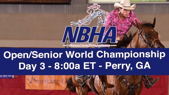 NBHA Open/Senior World Day 3 - Perry, GA