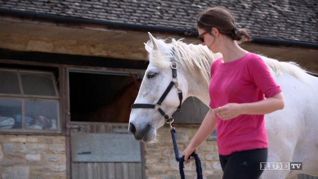 Equestrian World Shorts- Equine Therapy with Nike Vorster