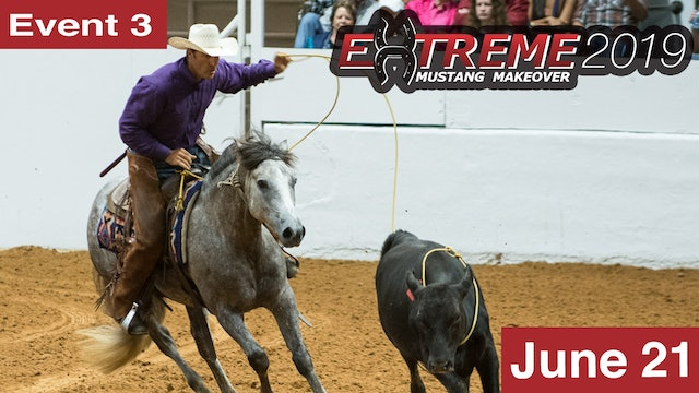 Extreme Mustang Makeover: Youth Freestyle Class