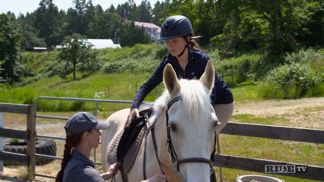 Equestrian World Shorts- CTRA