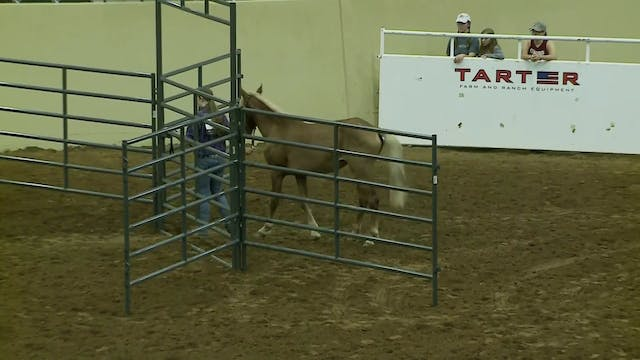 Youth Trail Class - Dacie Zook