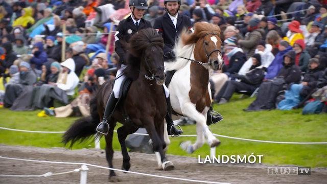 Equestrian World Shorts- Iceland-Landsmot