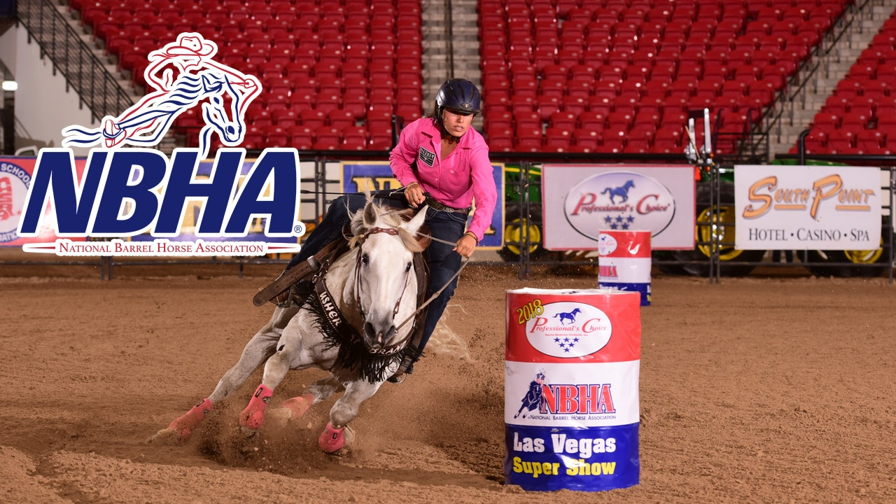 2019 NBHA Professional's Choice Vegas Super Show