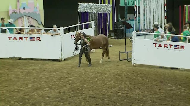 Youth Freestyle Class - Trinity Ives