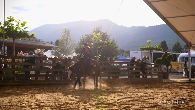 Equestrian World Shorts- Gina Schumacher