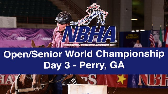 NBHA Open/Senior World Day 3 - Perry, GA