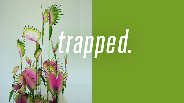Trapped - Part 1 [September 8, 2019]