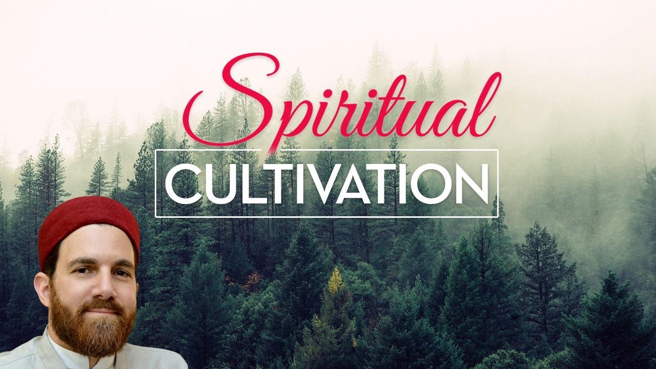 Spiritual Cultivation