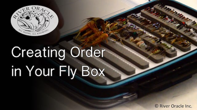 Creating Order in Your Fly Box