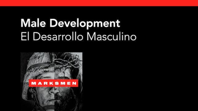 Male Development / El Desarrollo Masculino