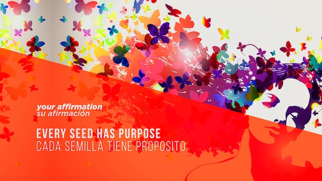 Every Seed Has Purpose / Cada Semilla...