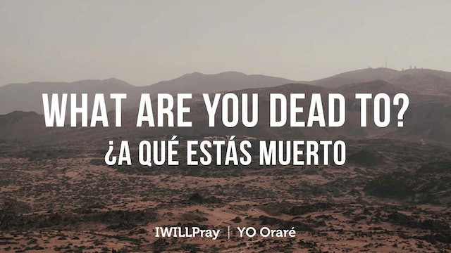 What Are You Dead To? / A Que Estas Muerto