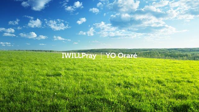 Work Your Land / Trabaja tu Tierra