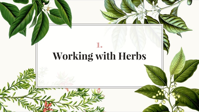 Herb Magic Lesson 1: Working with Herbs