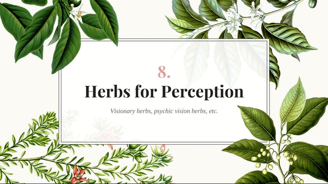 Herb Magic Lesson 8: Herbs for Percep...