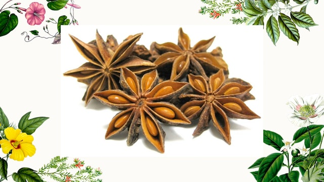 Herb Magic Lesson 12: Anise and Star Anise