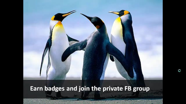 Earn badges and join the private FB group