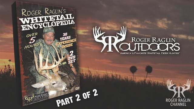 Whitetail Encyclopedia Pt 2 • Vintage...