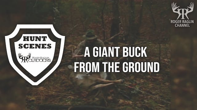 A Giant Buck From the Ground • Hunt S...