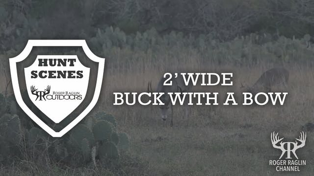 2' Wide Buck With a Bow • Hunt Scenes