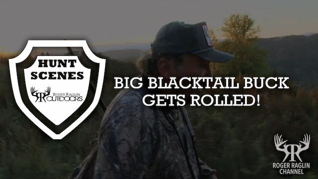 Big Blacktail Buck Gets Rolled • Hunt Scenes