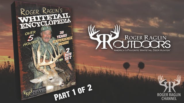 Whitetail Encyclopedia Pt 1 • Vintage...