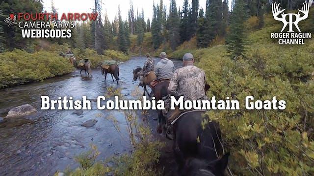 British Columbia Mountain Goats • Fou...