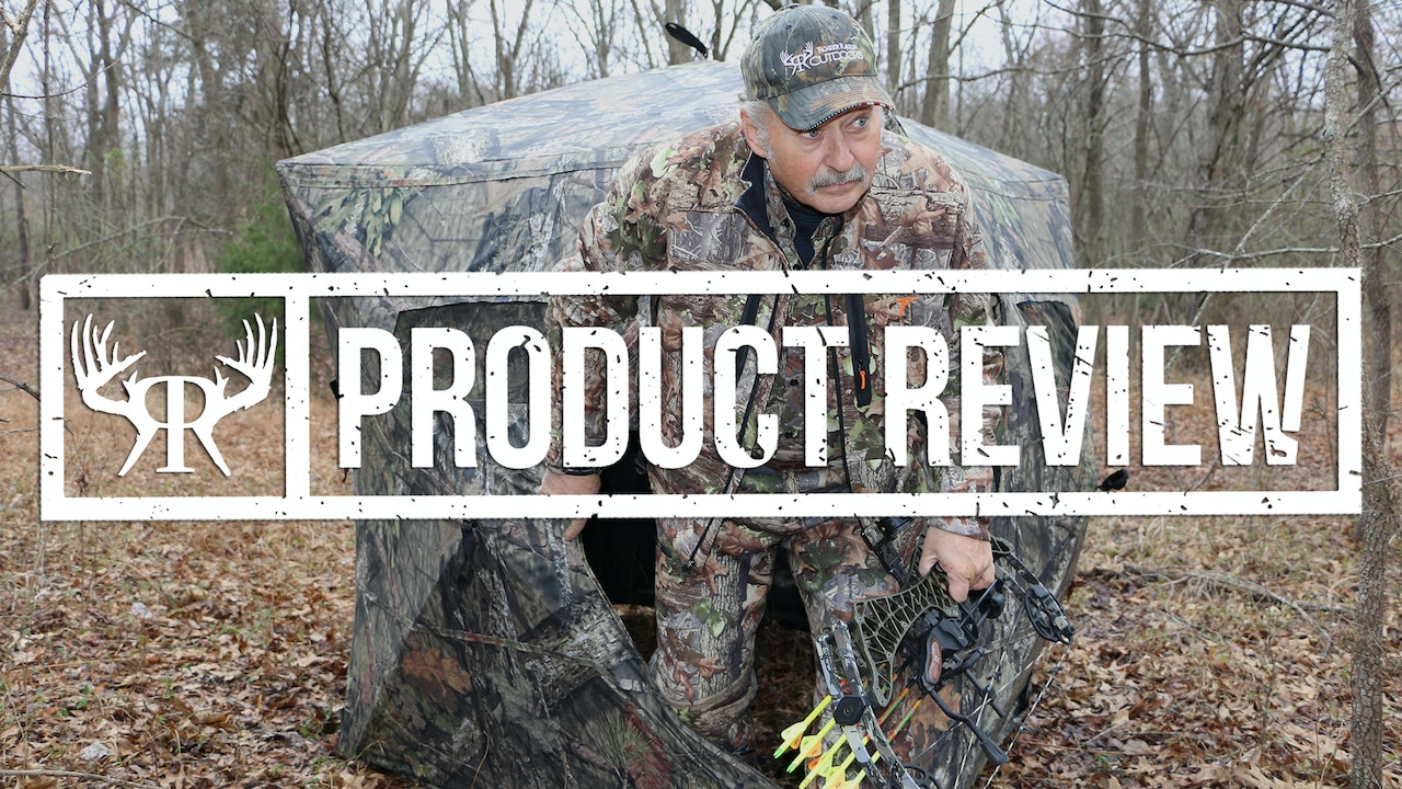 Product Reviews & Previews