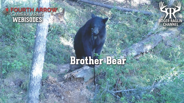 Brother Bear • Fourth Arrow Webisodes