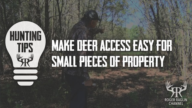 Make Deer Access Easy For Small Pieces Of Property • Hunting Tips
