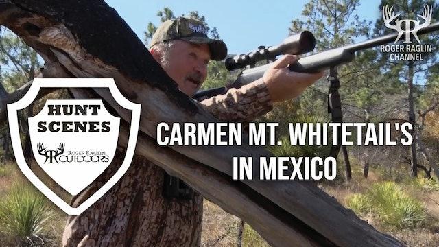 Carmen Mt. Whitetail's in Mexico • Hunt Scenes