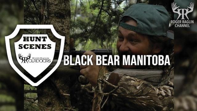 Black Bear Manitoba • Hunt Scenes