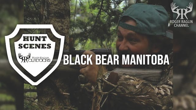 Black Bear Manitoba • Hunt Scenes