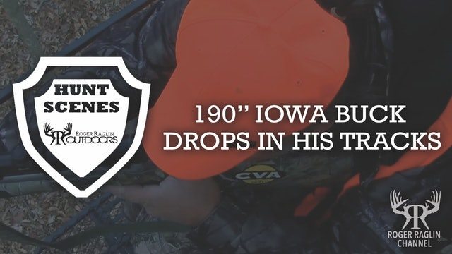 "190"" Iowa Buck Drops • Hunt Scenes"