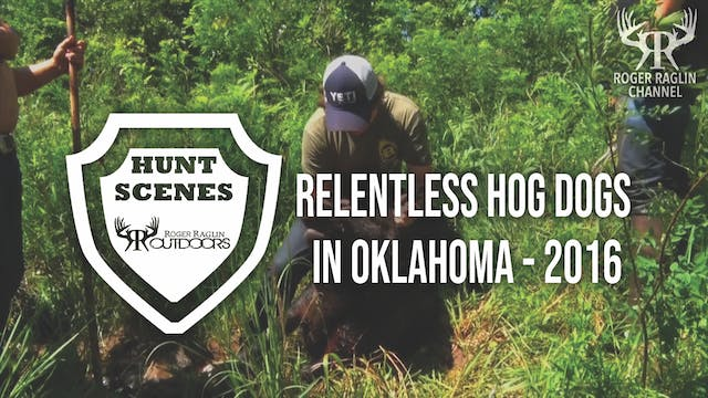 Relentless Hog Dogs in Oklahoma - 201...