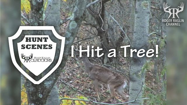 I Hit a Tree! • Hunt Scenes