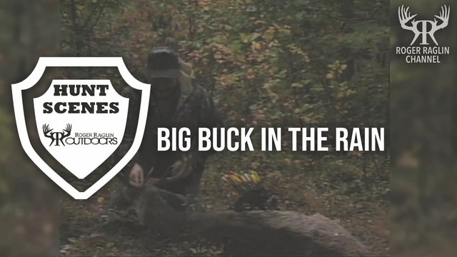 Big buck in the rain • Hunt Scenes