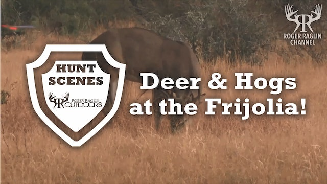 Roger and Josh Shoot Deer and Hogs at the Frijolia • Hunt Scenes