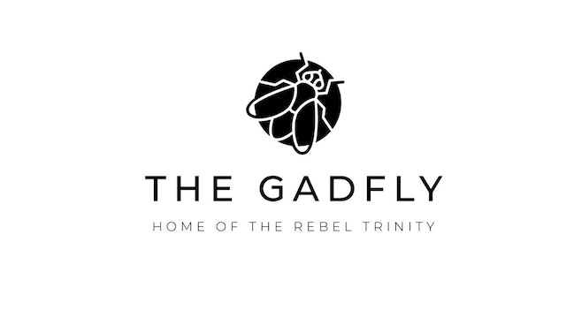 Gadfly Discussion: Economic Outlook - London Paul and Ken (05/22/2020)