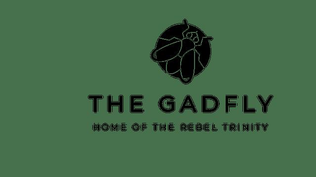 Gadfly Discussion: Paul & Ken - Market Hopium & Fake Capitalism (10/11/19)