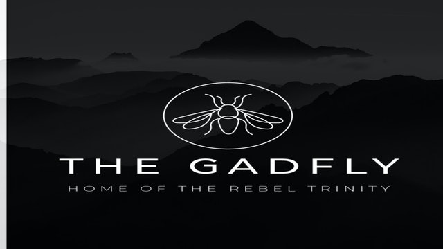 Gadfly Roundtable Discussion - Jim, Paul and Ken (5/18/2020)