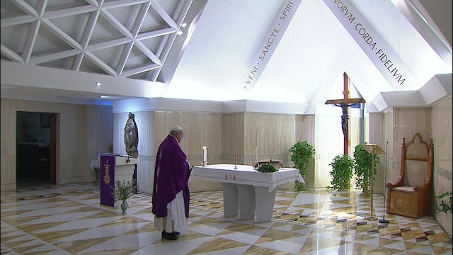 Pope prays for those in prisons, who ...