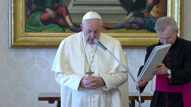 Pope in General Audience: Every human...