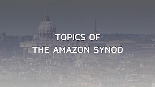 Keys to the Amazon Synod