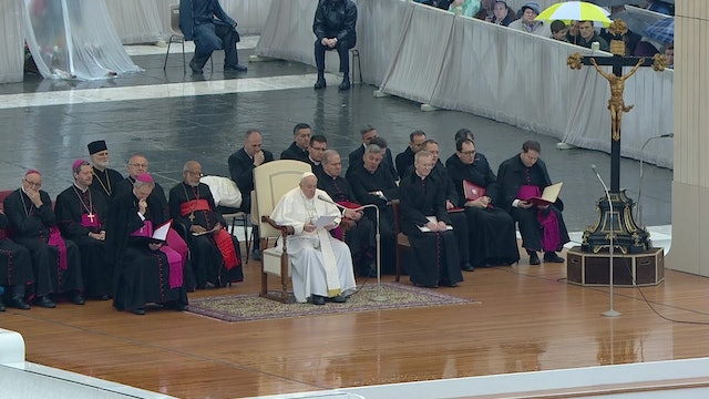 Pope in General Audience: we need to ask forgiveness from God everyday