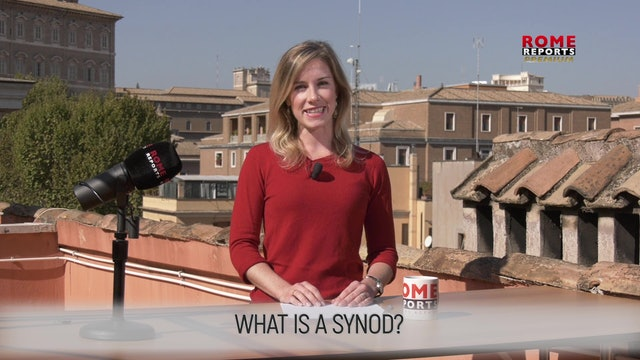 WHAT IS A SYNOD?